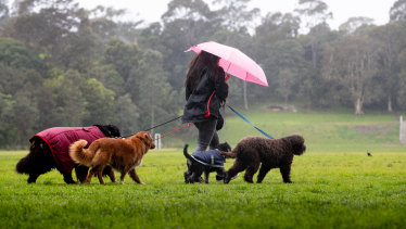 Sydney's weekend is off to a wet start.