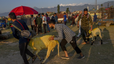 India has ordered a crackdown on the religious sacrifice of animals in Kashmir, appearing to invite tensions in the majority-Muslim region.