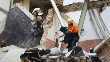 A Chilean rescuer, right, holds a sniffer dog as they search in the rubble of a collapsed building in Beirut after detecting a sign of life one month after the massive port blast.