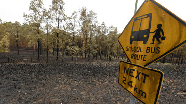 Scorched earth after bushfires near Tabulam in north-eastern NSW on Wednesday.