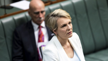 Labor spokeswoman for education and training, Tanya Plibersek.
