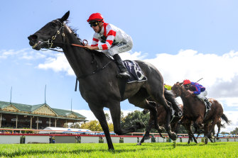 Miss Siska has joined Matthew Smith's stable ahead of the spring.