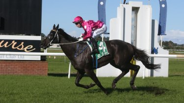 Steamin' is among the fancies in the sixth at Dubbo on Friday.