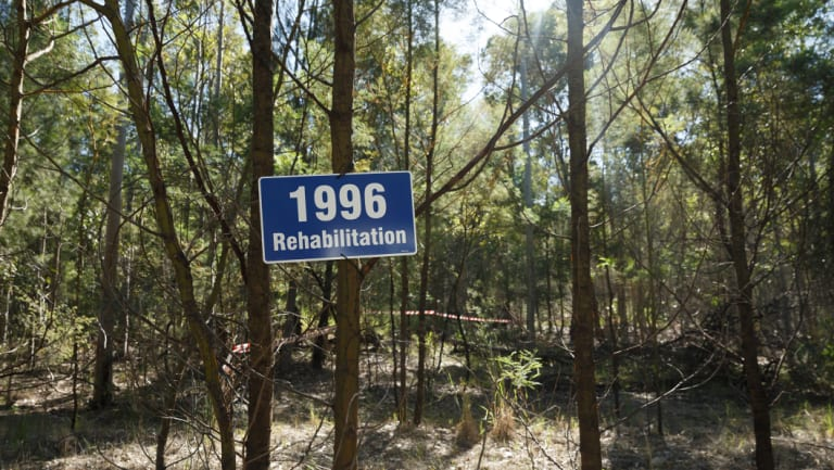 Rehabilitation efforts at a former open cut mine in the Hunter Valley.