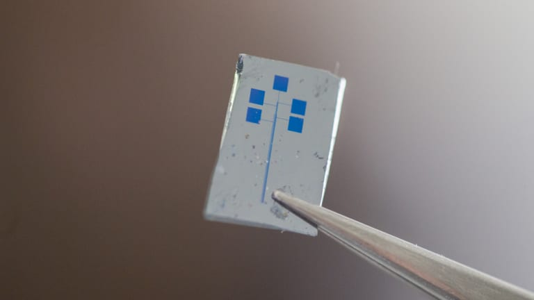 The ANU team's semiconducting material, which cannot be seen with the naked eye, sits in between gold electrodes on the chip.