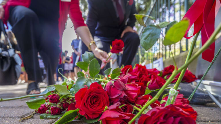 Roses are laid at a Red Rose rally, outside the Queensland Parliament House, honouring women lost to violence.