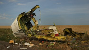 The rear fuselage of flight MH17 at the crash site in Ukraine.