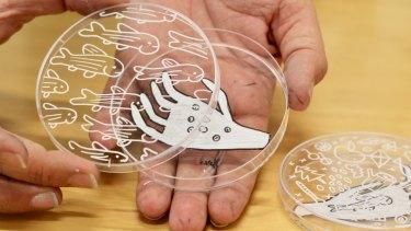 Petri dish by Barek