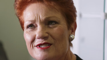 One Nation Leader Pauline Hanson speaks about the super changes on Monday.