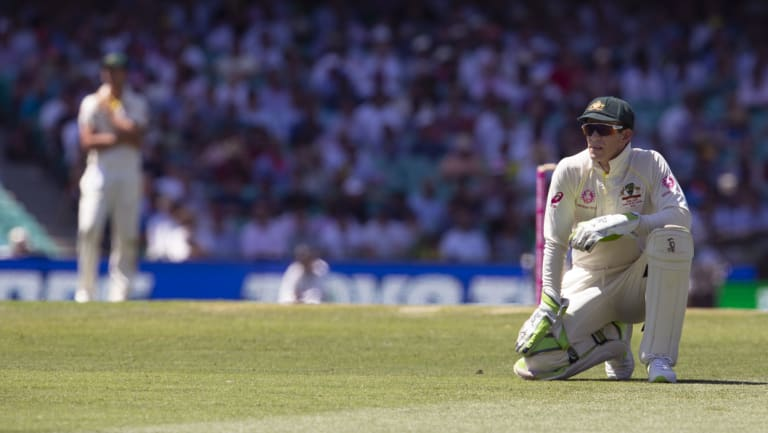 Paine and suffering: The Australian captain watches as another ball races away to the boundary.