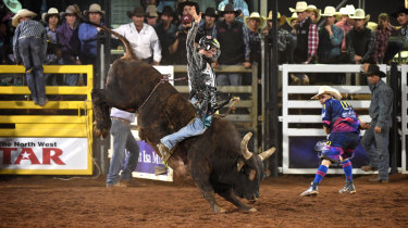 A competitor takes part in the open bull ride event at the Mount Isa Mines Rotary Rodeo on Friday.