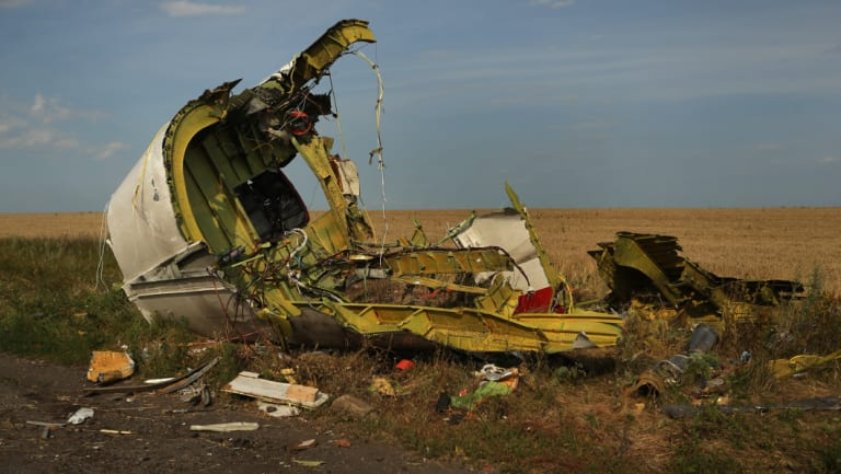 The rear fuselage of flight MH17 at the crash site outside the village of Grabovka in the self proclaimed Donetsk Republic, Ukraine, in July 2014.
