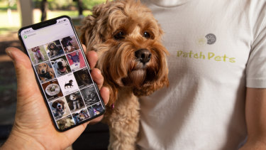 Is your hound lonely? A new app could connect them to their new best friend.