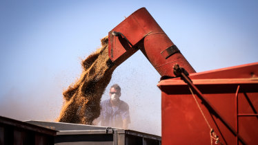 China could soon target imports of Australian wheat, after already turning its attention to barley,wine, cotton and beef, have rattled the market.