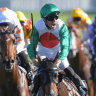 Castelvecchio the toast of Randwick after Champagne victory