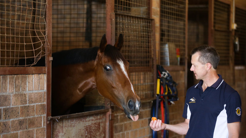 Trainers converge on mid-north coast meeting after fire drama