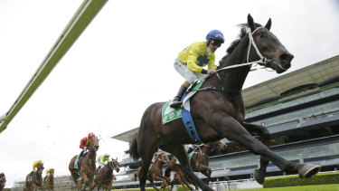 From The Bush won a Highway at Rosehill on July 10 and is a danger in the Forbes Cup.