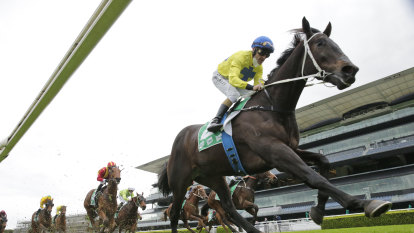 Race-by-race preview and tips for Forbes on Sunday