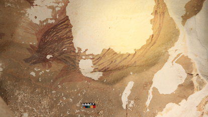The ancient art disappearing before our eyes due to climate change