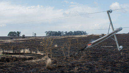 Power company settles St Patrick's Day bushfires class action