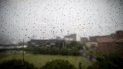 Bring umbrellas, prepare for mosquitoes as wet weather to continue into next week