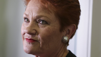 'Exasperated and outraged': Government to review Family Court after pressure from Hanson