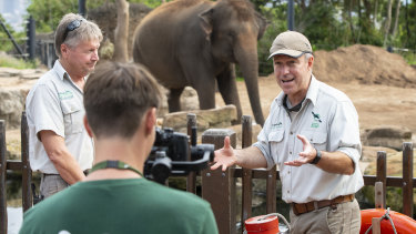 Hayden Turner, Taronga Zoo's manager guest experiences, right, interviews elephant keeper Darryl Lewry, left, while Guy Dixon films an episode for Taronga TV on Wednesday.
