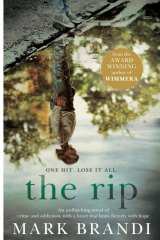 The Rip by Mark Brandi.