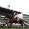 Inside Running: Melbourne Cup Warning set to sound at Caulfield