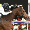'Confounding' mare True Self cast as 2020 Cup chance