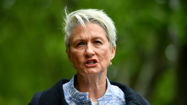 Pressing on: Kerryn Phelps will not let the email scandal compromise the remainder of her campaign.