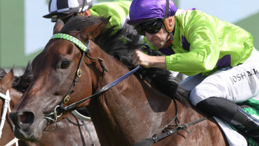 Roaring home: Nakeeta Jane comes with a barnstorming run to win the Light Fingers Stakes earlier this month.