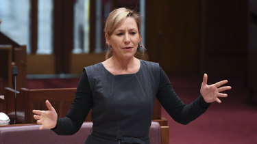 Senator Larissa Waters cited evidence given earlier during the inquiry which suggested domestic violence orders do not affect court proceedings.