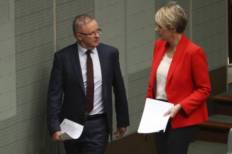 Opposition Leader Anthony Albanese and Sydney MP Tanya Plibersek during question time on Monday.
