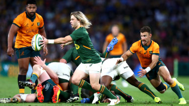 BRISBANE, AUSTRALIA - SEPTEMBER 18: Faf de Klerk of South Africa kicks the ball through during The Rugby Championship match between the Australian Wallabies and the South Africa Springboks at Suncorp Stadium on September 18, 2021 in Brisbane, Australia. (Photo by Chris Hyde/Getty Images)