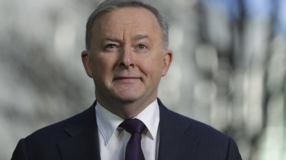New-look Labor looks a lot like the old - but these changes give Albanese a fighting chance