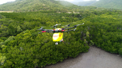 Croc-spotting drones to patrol north Queensland skies
