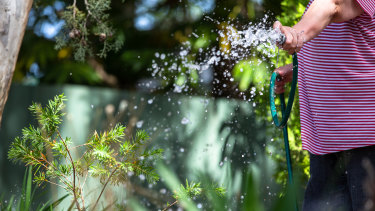 Upcoming level two water restrictions in Sydney will mean hosing the garden is not permitted.