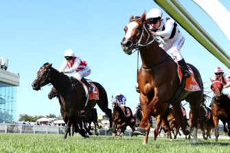Linda Meech rides Pippie to victory in the Oakleigh Plate earlier this preparation.