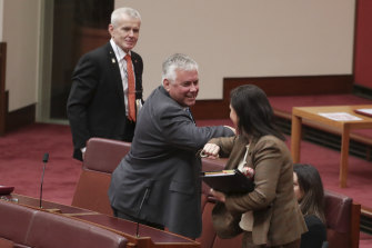 Senator Rex Patrick elbow taps Concetta Fierravanti-Wells after she voted with the crossbench during an attempt to establish an inquiry into Australia's relationship with China.