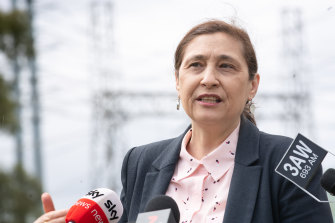 Energy Minister Lily D'Ambrosio announces the Victorian Big Battery project on Thursday.