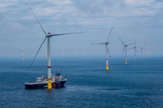 The Star of the South wind farm would look similar to the Veja Mate offshore wind farm in Germany.