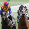 Hickman won't give decision on Everest-bound Pierata short shrift