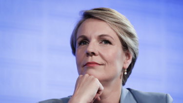 "Labor education spokeswoman Tanya Plibersek said the party would ""wait to see"" any detailed proposals from the government."