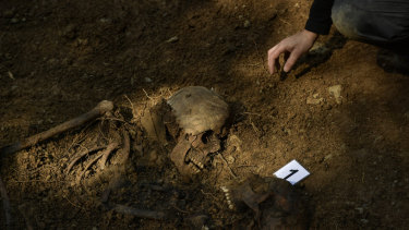 An archeologist inspects a grave in the village of Leranoz, about 30 kilometres from Pamplona. The grave is believed to contain the remains of two republican prisoners killed during the Spanish Civil War.