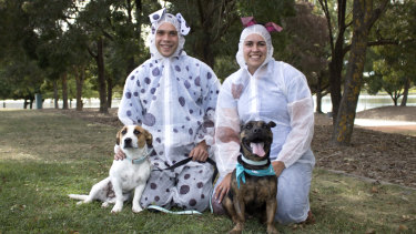 RSPCA ACT is trying to set theGuinness World Recordfor having the largest gathering of people dressed as dogs.