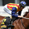 Waller wants wide draw for Nature Strip in the Moir