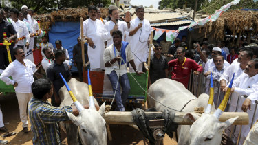 India's Congress party president Rahul Gandhi, centre, addresses a crowd from a bullock cart in Malur, 45 kilometers  from Bangalore.