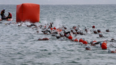 Competitors swimming in the 2019 Lorne Pier to Pub on Saturday.