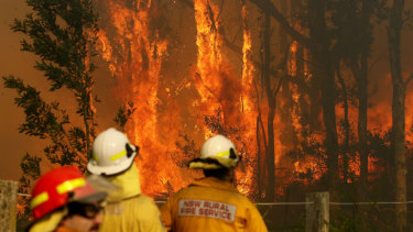 Local councils will help fund reforms to workers' compensation for volunteer and career firefighters suffering from work-related cancers.